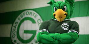 Cimento Goiás seguirá com o Goiás até o final da temporada